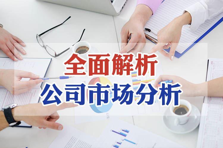 酒店市場劃分之公司市場分析